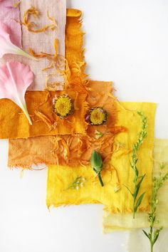 Experimenting with natural dyes. A simple run down on how to extract beautiful hues from a few items you may already have in your kitchen. Written by Rachel Denbow for A Beautiful Mess.