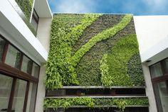 Jardines verticales de Gsky. Descripción de los tipos de módulos para jardín vertical de la empresa Gsky. Fotos, sistemas de riego, y recomendaciones de aplicación de cada uno de ellos. #General