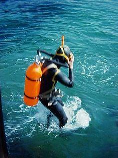 188f7a65fff3 35 Best scuba diving images