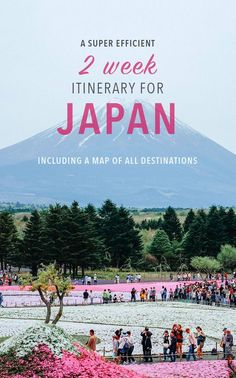 This ambitious (and effective) two-week itinerary for Japan is perfect for cherry blossom season, and mixes classic experiences with off-beat adventures! See how to visit 12 cities in 14 days without breaking a sweat.