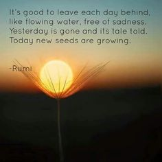 Image result for it's good to leave each day behind rumi