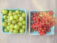 You know summer must be here when you can get Gooseberries & Red Currants 🍇