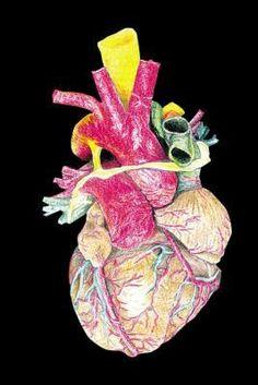 Senior health amp exercise on pinterest retirement heart health and
