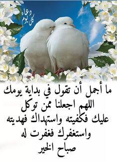 Eid Boxes, Love U Mom, Horse Pictures, Loving U, Allah, Horses, Bird, Animals, Bonjour