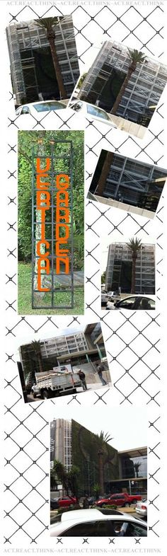 collage for blog post with images by me of a new VERTICAL GARDEN in the city