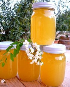 Edible flowers in the kitchen – Acacia Cooking 101, Cooking Recipes, Vanilla Paste, Mason Jar Wine Glass, Edible Flowers, Kefir, Kraut, Acacia, Hot Sauce Bottles
