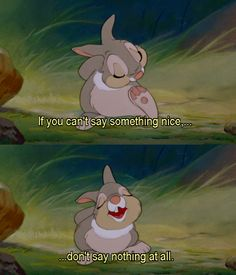 """If you can't say nothing nice...don't say nothing at all."" ~ Thumper"