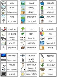 Editable Vocabulary Cards ~ Science Elementary Science, Teaching Science, Science Activities, Elementary Schools, Shadow Tree, Vocabulary Cards, New Words, Primary School