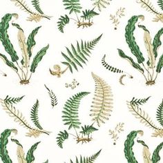 Shop pattern Elsie De Wolfe Greens On Off White Scalamandre Fabric at Lowest prices. Shop by color, theme or content plus fabric patterns & colors. Drapery Fabric, Fabric Decor, Curtains, Fern Wallpaper, Wallpaper Designs, Bathroom Wallpaper, Pattern Wallpaper, Elsie De Wolfe, Fabric Suppliers