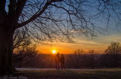 Romantic sunset by Tavo