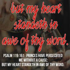 Psalm 119:161   ¶ SCHIN. Princes have persecuted me without a cause: but my heart standeth in awe of thy word.