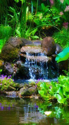 Backyard Water Feature, Ponds Backyard, Backyard Waterfalls, Garden Ponds, Backyard Ideas, Koi Ponds, Garden Waterfall, Small Waterfall, Pond Design
