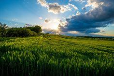 Sunstar   Flickr - Photo Sharing!