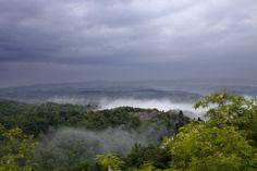 Tuscany. The mystic mist from Villa Lena.