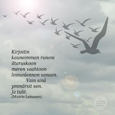 'I wrote my most beautiful poem in the trails of the dawn, the foam of the sea, the birds flight. Only you understood. And arrived' | Finnish | Runot 2 - Marlan kuvat