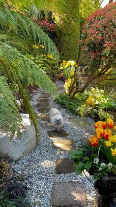Garden Planters, Succulents Garden, Garden Art, Love Garden, Garden Paths, Outdoor Retreat, Outdoor Rooms, Good Morning Flowers Gif, Garden Ideas To Make
