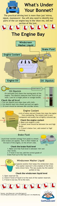 Basic Car Maintenance, Mechanics & Engine Parts Infographic