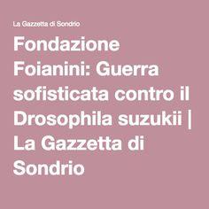 Fondazione Foianini: Guerra sofisticata contro il Drosophila suzukii | La Gazzetta di Sondrio