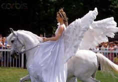 Carnaval chegando, fantasias para cavalos