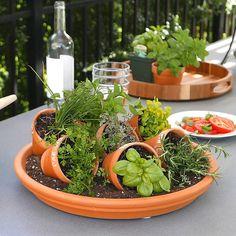 Diy Herb Garden, Dish Garden, Garden Pots, Potted Herb Gardens, Broken Pot Garden, Potted Herbs, Fairies Garden, Garden Deco, Herbs Garden