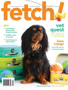 The latest issue of fetch is out! The Jet Set Pets issue is filled to the brim with tips, tricks, and hacks for traveling with your furry friend!