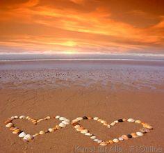Strand Meer Urlaub Liebe Herz Herzen Symbol Sonnenuntergang orange rot Flitterwochen Brandung Muscheln