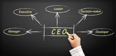 Successful CEO's have common traits that help them improve their organizations in ways that lead to increases in shareholder value.