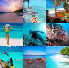 """This is Maldives on Twitter: """"Our Instagram #Maldives account ☀️  👉 https://t.co/nDh2IPsgp9 👈 https://t.co/JT35deI0tG"""""""