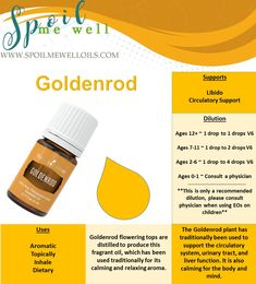 Goldenrod Essential oil, Young Living, Dilution ratios, libido, circulatory support, all natural living, naturally healthy