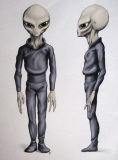 I Coniugi Barney e Betty Hill Rapiti dagli alieni