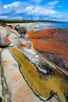 The Bay of Fires, Tasmania, Australia, with its orange-hued granite caused by lichen