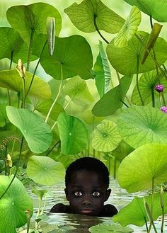 View World 14 by Ruud van Empel on artnet. Browse upcoming and past auction lots by Ruud van Empel. Beautiful Eyes, Beautiful Pictures, Stunningly Beautiful, Illustration, Jolie Photo, People Of The World, Beautiful Children, Black Art, Cute Kids