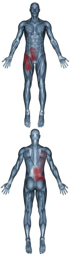 Pain patterns of the psoas major muscle, psoas minor muscle and Iliacus muscles.
