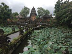 Pura Taman Saraswati // Ubud // Temple // Bali // Indonesia