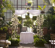 Chuppah with flowering dogwood branches.