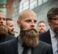 Bald and Bearded - Awesome Beard Style Ideas From Beardoholic.com