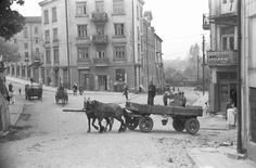 My Kind Of Town, Ppr, Ancestry, Old Photos, Poland, City Photo, Program, Painting, Author