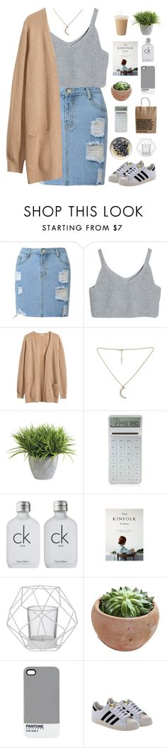 """Untitled #556"" by amy-lopezx ❤ liked on Polyvore featuring H&M, Ethan Allen, LEXON, Calvin Klein, Bloomingville, Pantone, adidas Originals, women's clothing, women and female"