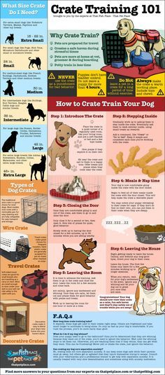 Crate trainings dos and dont's for dog owners [Infographic] -Training your dog to use a crate can help better prepare your canine friend for travel and give him a safe space. -Posted Mar 13, 2014
