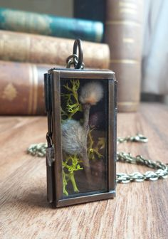 Shadow box terrarium necklace pussy willow and moss by UraniaArt
