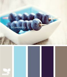 color palette in blues. The last two are what I planned on using and I like the other tones for accent colors