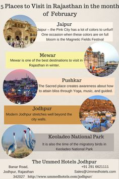 5 Places to Visit in in the month of February. Places To Travel, Places To Visit, India Travel Guide, Honeymoon Packages, Jodhpur, Travel And Tourism, Amazing Destinations, Holiday Travel, Best Hotels