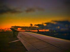 Wellington's airport