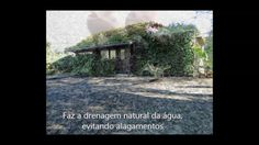Ecopavimento - Pavimento Natural Plants, Grass, Urban Heat Island, Flood Prevention, Water Treatment, Paving Stones, Earth, Flora, Plant