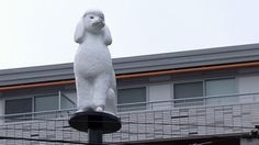"""A pricey pooch on a pedestal has people in Vancouver scratching their heads.  Dubbed """"The Main Street Poodle,"""" a new public art installation at Main Street and 17th Avenue is part of a larger public art project that costs just shy of $100,000, according to media reports.      Read more: http://bc.ctvnews.ca/bow-wow-vancouver-poodle-statue-causes-a-stir-1.1139024#ixzz2JgLGEyWA"""