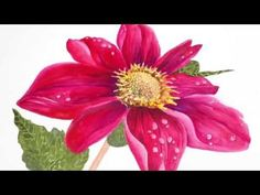 Easy, step-by-step Tutorial, How to paint Hibiscus flower in Watercolor - YouTube