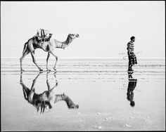 Along the caravan route in the Danakil Depression by nahlinse