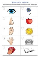five senses flashcard printable Preschool Jobs, Senses Preschool, Free Preschool, Preschool Learning, Kindergarten, Teacher Worksheets, Preschool Worksheets, Balloon Tree, Welcome To School