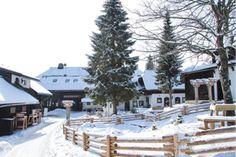 KIRCHLEITN (OOST). Vakantiepark voor families met kleine kids. Inclusief half pension, kinderclub. Appartement voor 4-6 personen, 200 meter van de skilift. In de krokus kinderpas voor € 1. 103 km piste.  http://www.mrsnomad.nl/accommodaties/92-wintersport-karinthie-oostenrijk/