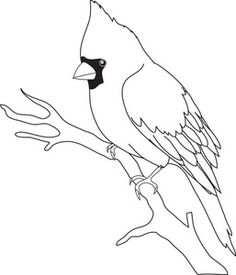 Bird Clipart | of a bird clipart illustration by rosie piter exclusively for acclaim ...